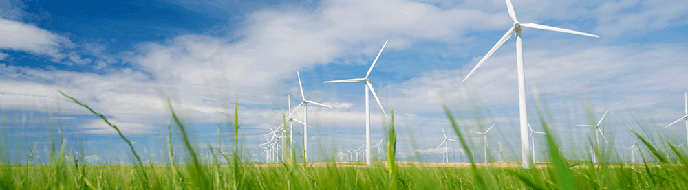 GREEN ENERGY IS SMART, SUSTAINABLE AND COST-EFFECTIVE
